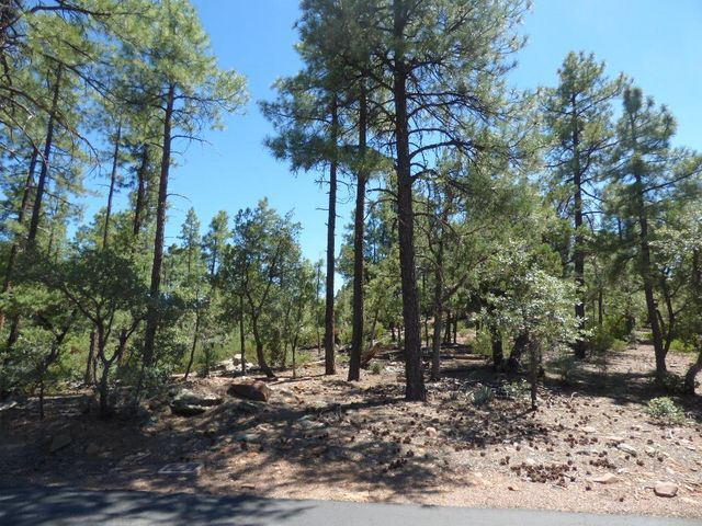 Lot 22 Valley View, Pine, AZ 85544