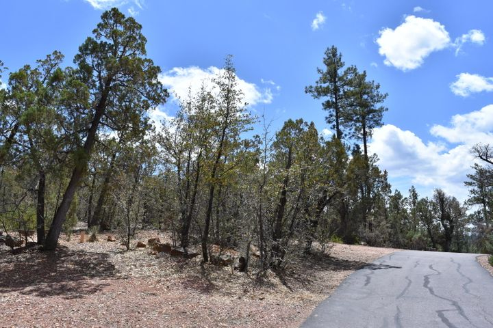 3479 N Wilderness Trail, Pine, AZ 85544