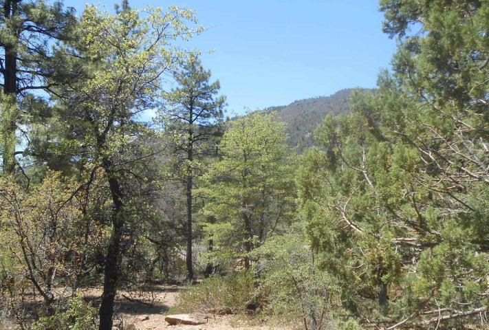 4324 N Kiva Circle, Lot 87, Pine, AZ 85544