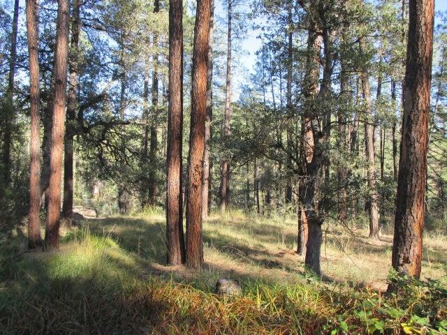 Part 626 N Forest Service Road 199, Payson, AZ 85541