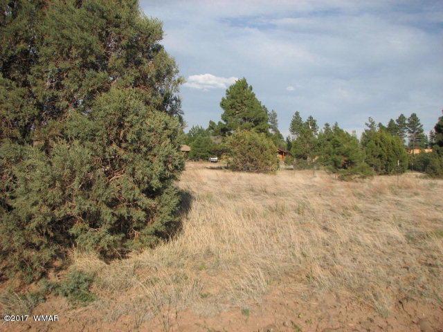 2743 Pine Meadow Drive, Overgaard, AZ 85933
