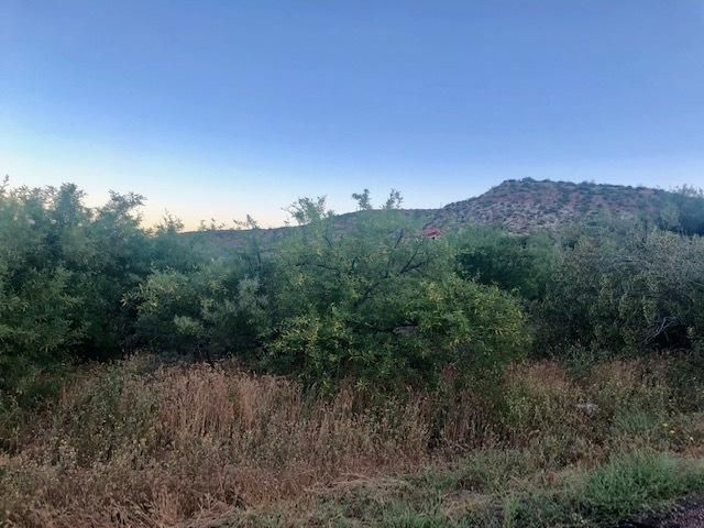 5V N Ocotillo Court, Tonto Basin, AZ 85553