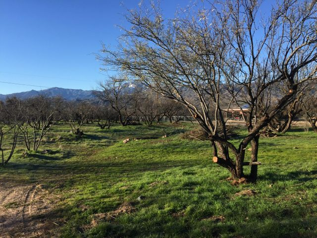 59M W Packard Drive, Tonto Basin, AZ 85553