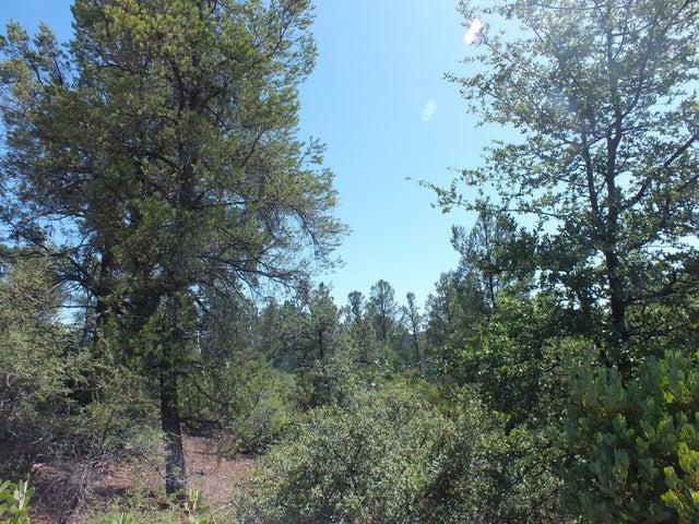 2013 E Rainbow Trail, Payson, AZ 85541
