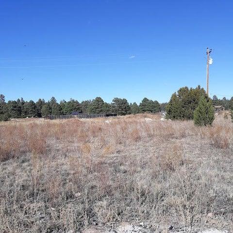 2274 Meadow Lane, Overgaard, AZ 85933