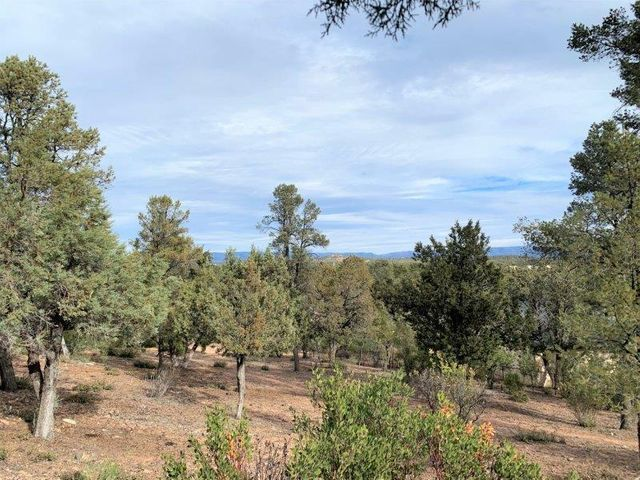 1102 S Milk Ranch Point, Payson, AZ 85541