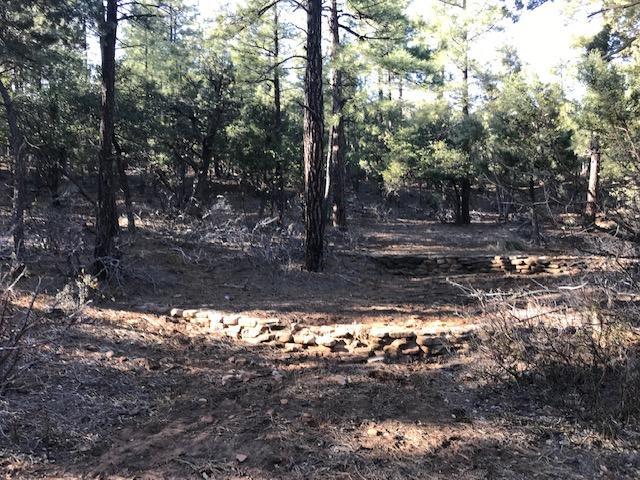 029 Pine Creek Canyon Road, Pine, AZ 85544