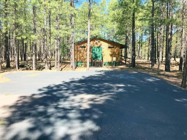 1986 State Route 260 Highway, Forest Lakes, AZ 85931