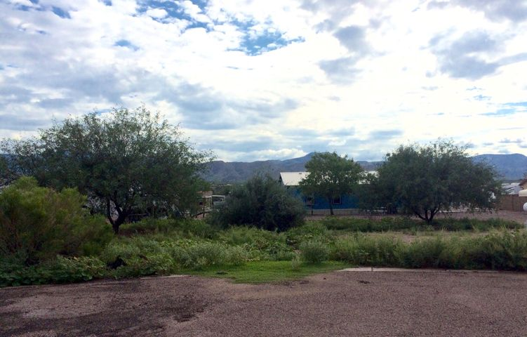 33 Greenback Circle, Tonto Basin, AZ 85553