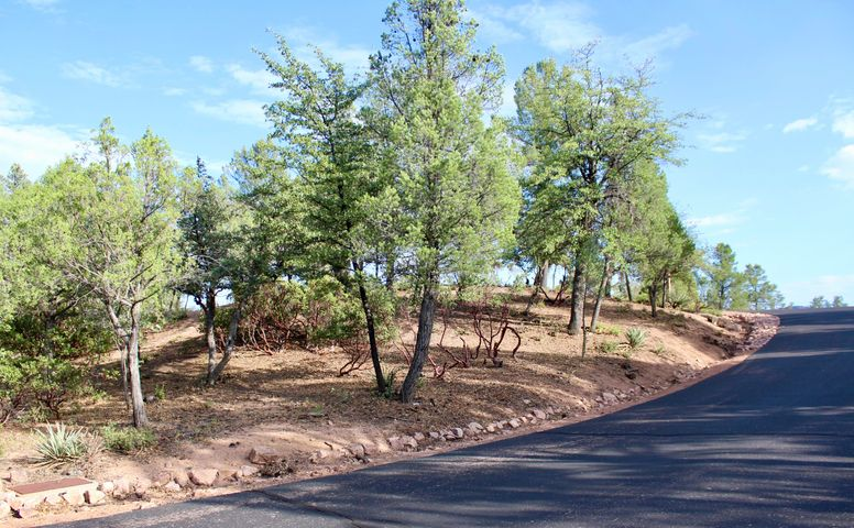 3000 E Hanging Rock, Payson, AZ 85541