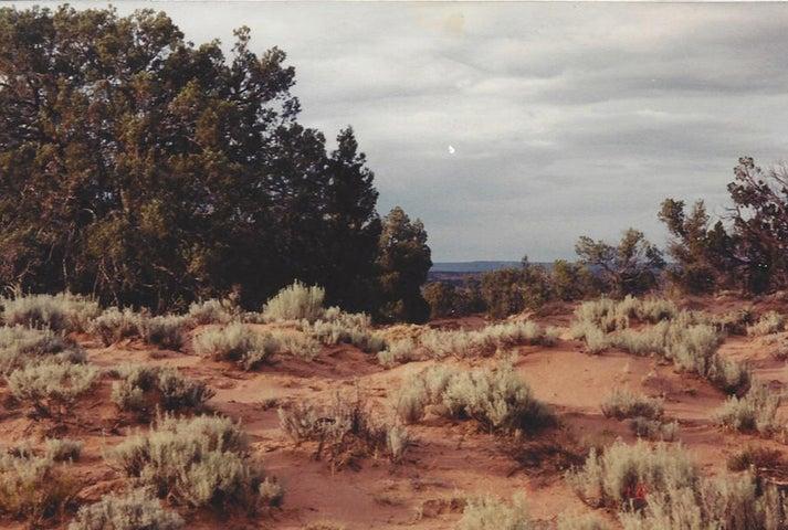 30 River Meadows Ranch, Concho, AZ 85924