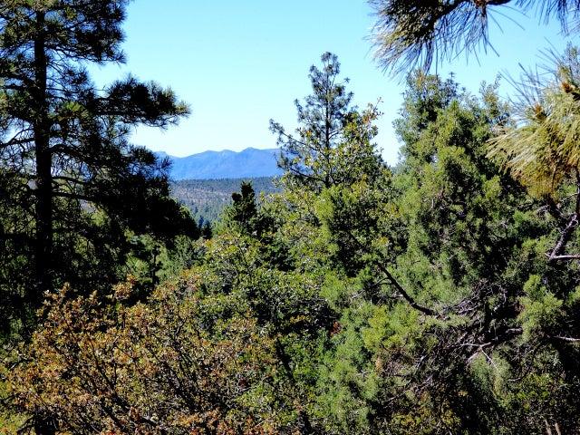 6234 W Pinon Loop, Pine, AZ 85544