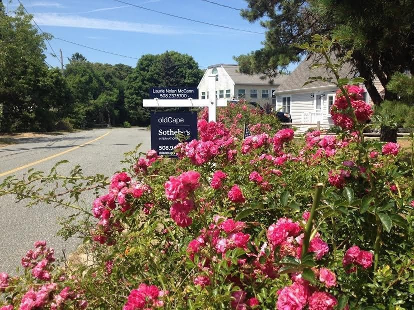 45 bay view road  chatham  ma  02659  south chatham jack cape cod cottage style homes cape cod cottage style home