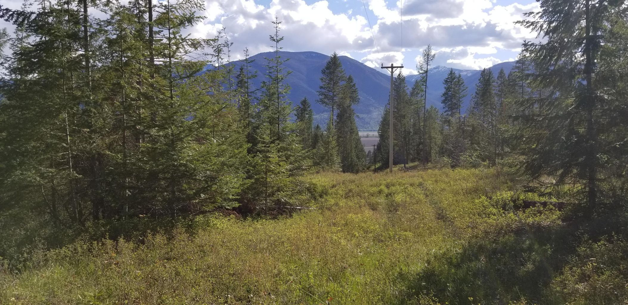 NNA New Chisholm Lane: Panoramic views of the Selkirk Mountains to the West. Amazing Southern Exposure! Power is very close on adjoining parcel.