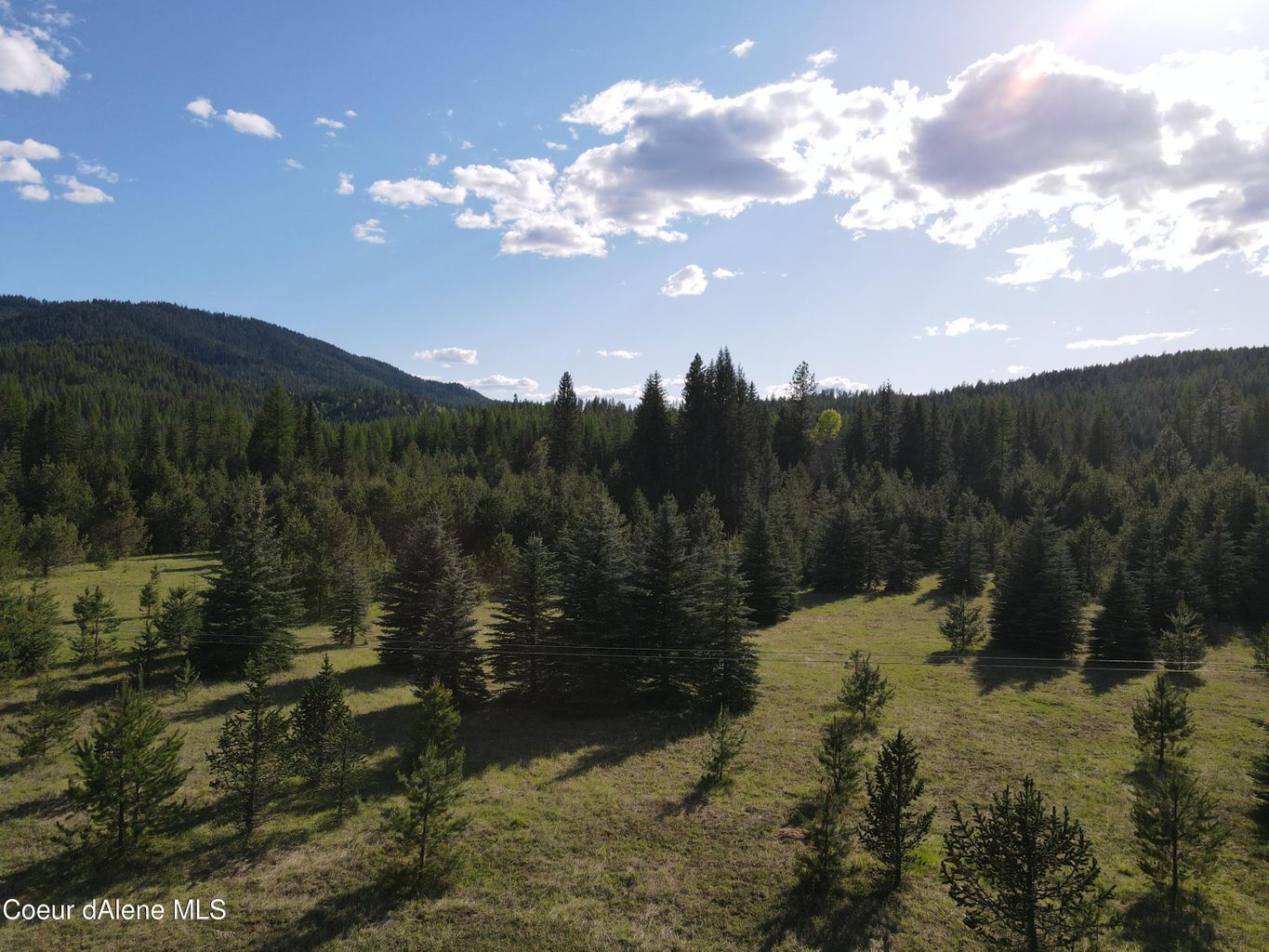 NNA Quartz Creek Road: 7.25 acres of flat buildable land, beautiful Blue Spruce grove of trees!