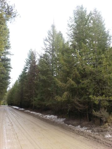 Trails End Rd, Athol, ID 83801