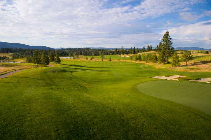 16246 S Pinot Pl, Coeur d