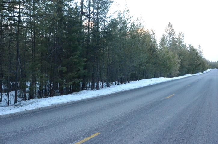 good buildable acreage fronted by paved road