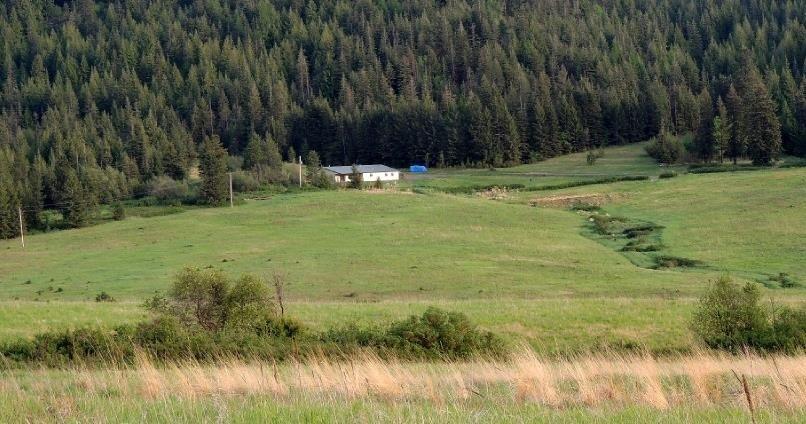 3603 Windfall Pass Rd, Plummer, ID 83851