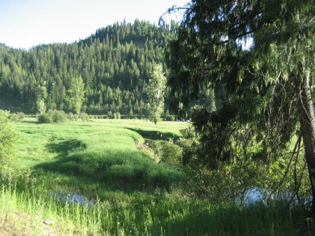 Lot 5 Old Railroad Grade Rd, Calder, ID 83808