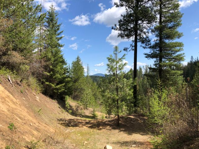 3572 S MOOSE CANYON RD, Coeur d