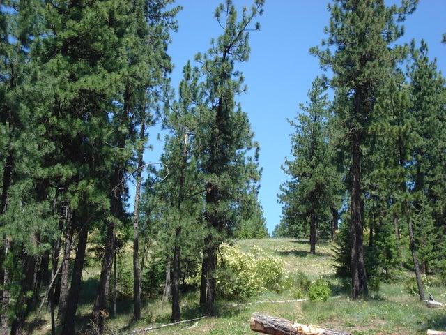 NNA S. Bobsled Trail, Coeur d