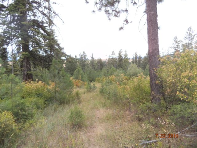 Radford Lane, Worley, ID 83876