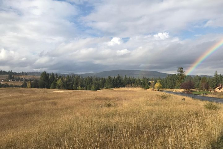 .69 Acres of level shovel ready building homesite will all utilities & paved roads in the gated community of Black Rock