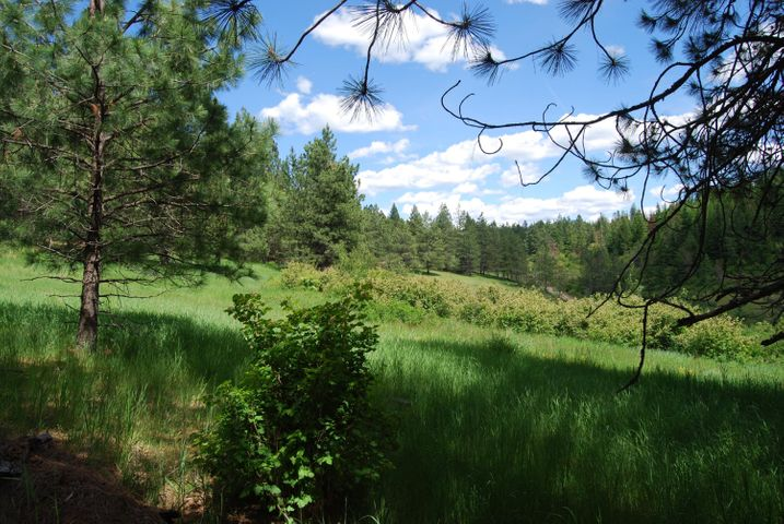 20 Acres S Upper Black Lake Rd, Harrison, ID 83833