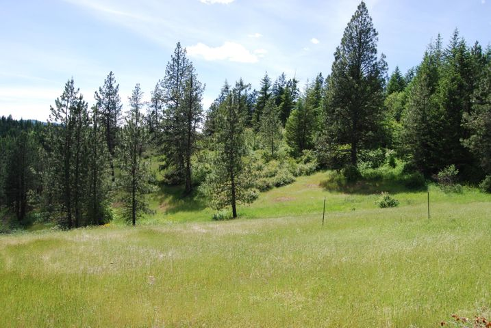 20 Acres 2 S Upper Black Lake Rd, Harrison, ID 83833
