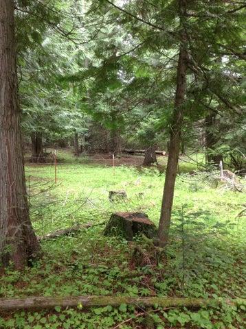 3794 S Elk Rd, Harrison, ID 83833
