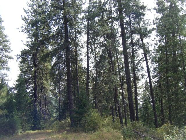 Merchantable timber
