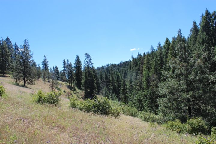NKA Vogel RD, Worley, ID 83876