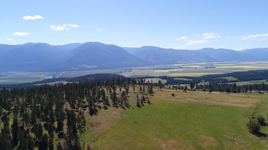 886 Wallen Road, Bonners Ferry, ID 83805