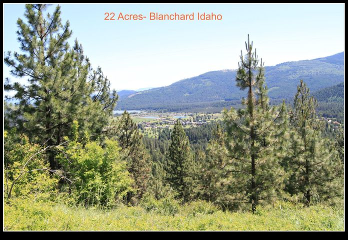 Surveyed!  Easements in Place! Borders 159 acres of State of Idaho land on one side.  This 22 acre parcel is ready to build your dream home on.  Filtered views of Lake San Souci,  a variety of building sites available.  Electricity is close by and its in an area of good wells.  Let the dreams begin!