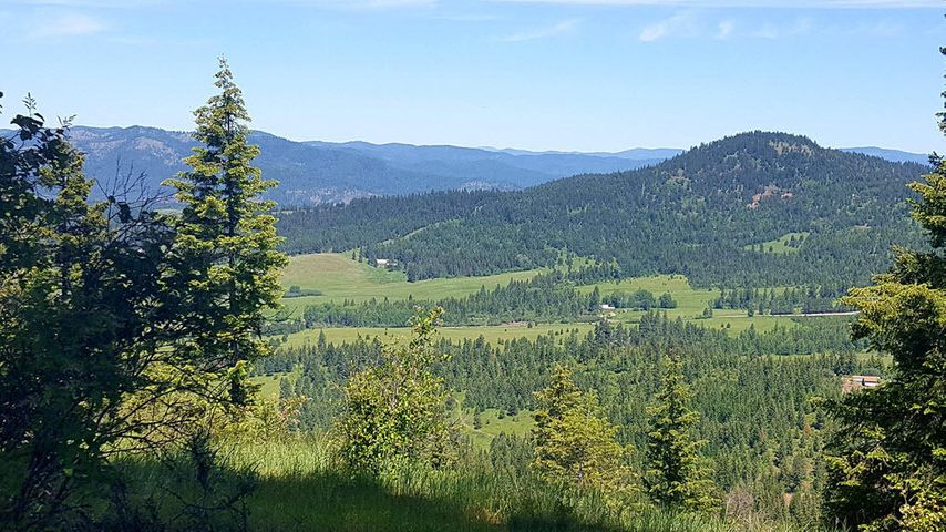 Vacant Land for sale in St  Maries, Idaho, 19-5467