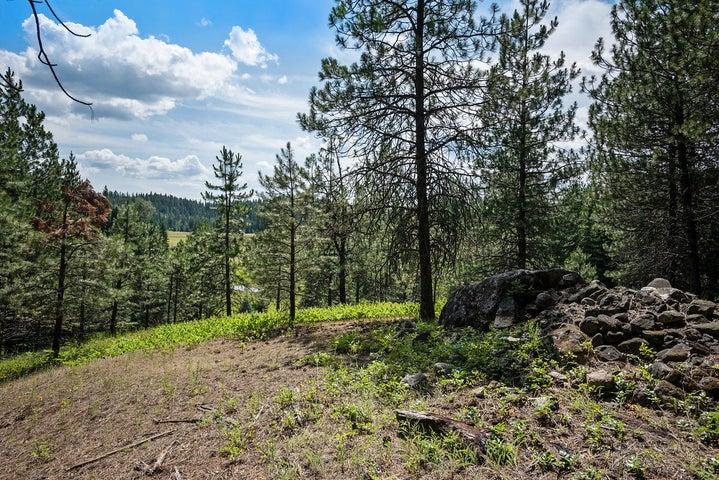 487 Fox Creek Spur, Priest River, ID 83856