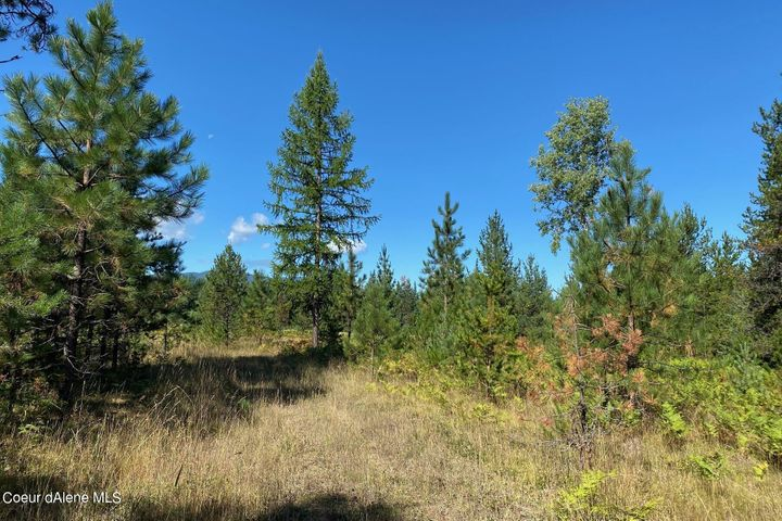 NNA Lone Cedar Lane, Clark Fork, ID 83811
