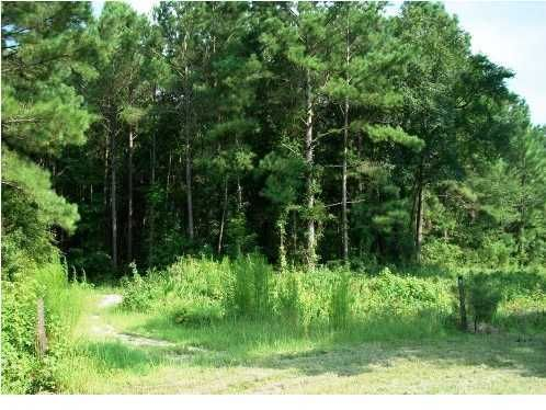 Sam Thompson Drive Awendaw, SC 29429