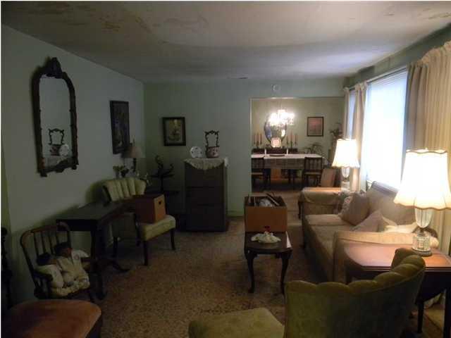 113  Rose Lane Mount Pleasant, SC 29464
