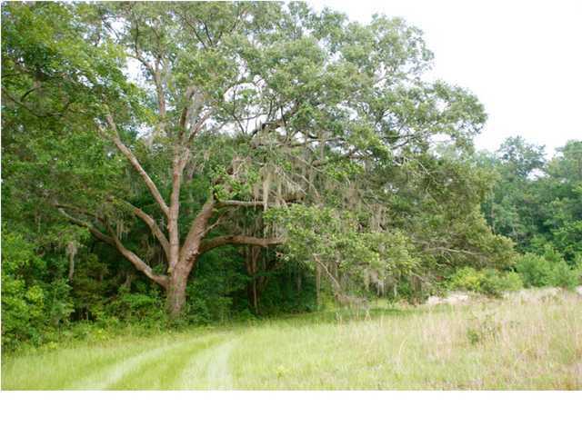 5881  Bears Bluff Road Wadmalaw Island, SC 29487
