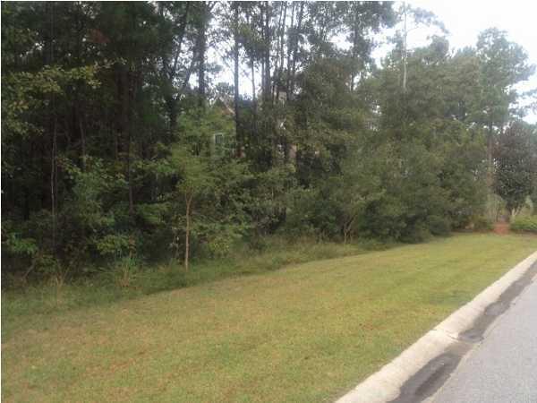 105  Wando Reach Road Charleston, SC 29492