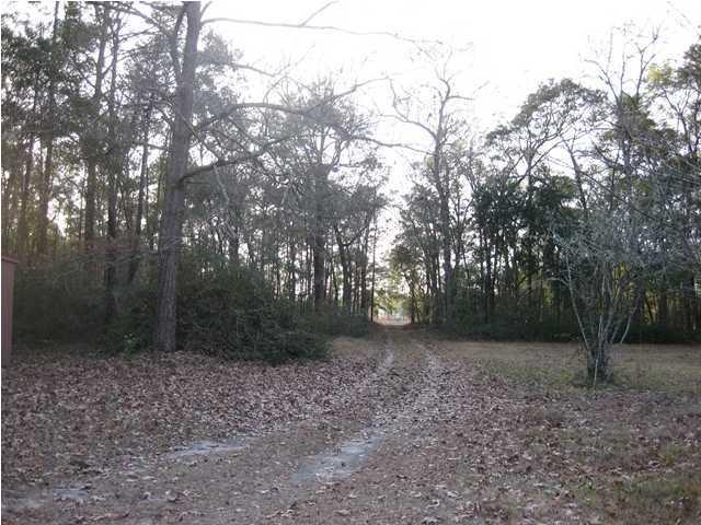 5114  Dr Taylor Road Adams Run, SC 29426