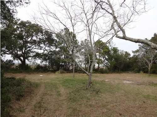 2668  Goldbug Avenue Sullivans Island, SC 29482