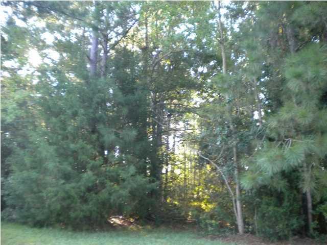 3327  Cottonfield Drive Mount Pleasant, SC 29466