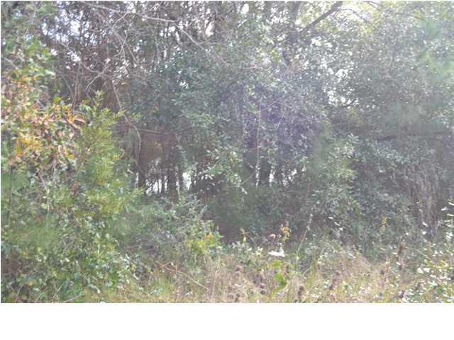 1700  Canyon Oaks Drive Mount Pleasant, SC 29464