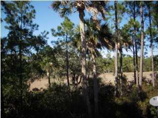 203  Chinaberry Lane Kiawah Island, SC 29455