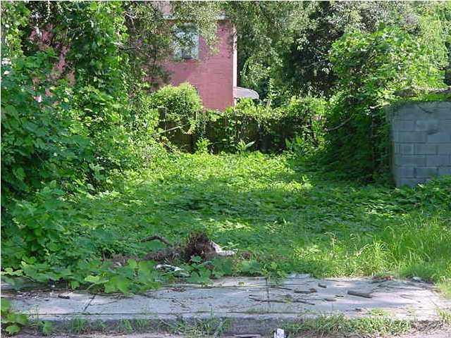 207  Romney Street Charleston, SC 29403