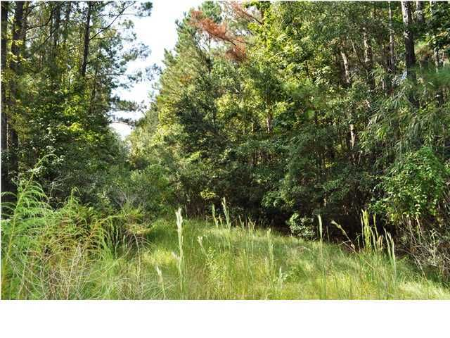 Faulkner Drive Mount Pleasant, SC 29466