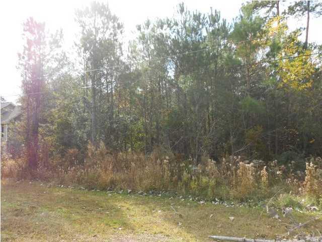1596  Macoma Drive Mount Pleasant, SC 29466